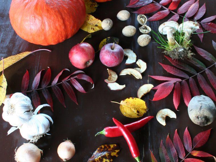 Proč mám ráda podzim – aneb co jíst, abychom jej ve zdraví přežili